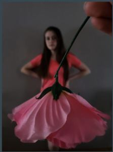 Forced Perspective(1)